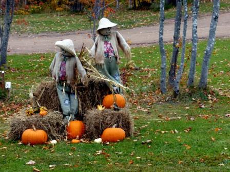 Halloween_25-10-2015_07-36-045.JPG