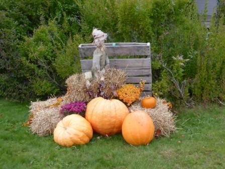Halloween_25-10-2015_11-31-48.JPG