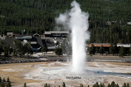 Old_Faithful_26-09-2015_08-55-055.JPG