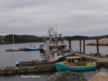 St_Georges_Beaver_Harbour_22-10-2015_03-39-30.JPG