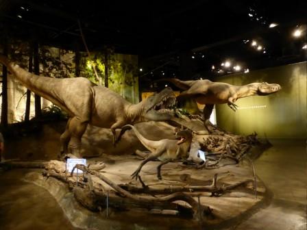 dinosaures_19-05-2015_02-52-41.JPG