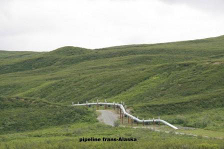 pipeline_trans_Alaska_26-06-2015_16-24-40.JPG