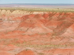 Petrified_Forest_13-05-2014_17-10-06.JPG