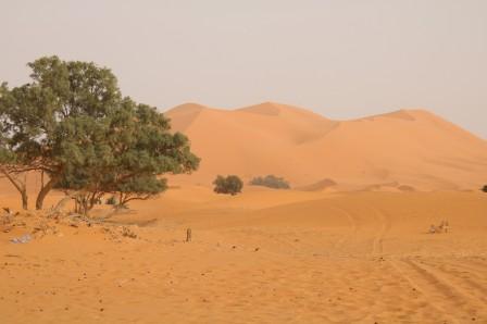 Marzouga la dune 17h36 1104